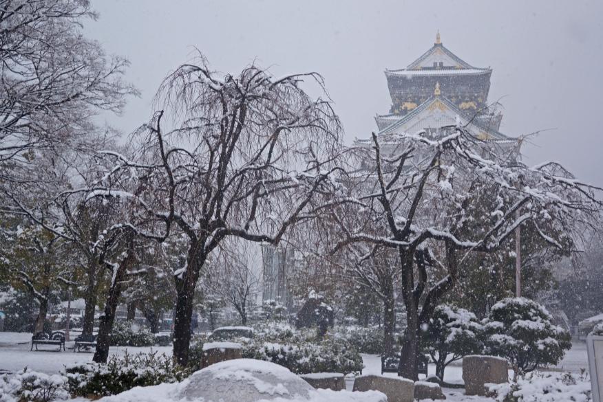 大阪城の雪景色 2014年2月14日大阪の積雪