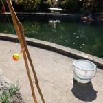 今日の出来事~有馬温泉にあるマス釣りからのランチMTG