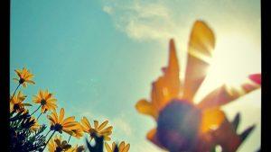 皆同じ太陽の下で〜instagram photo
